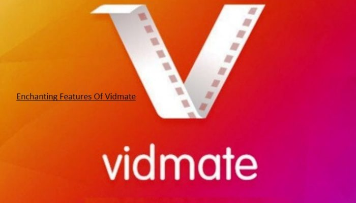 Vidamate app